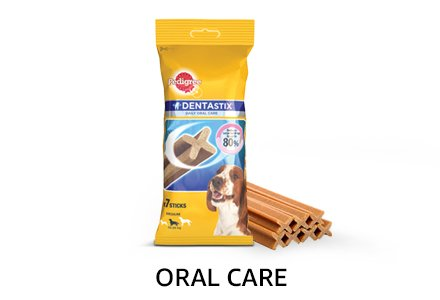 Daily Oral Care