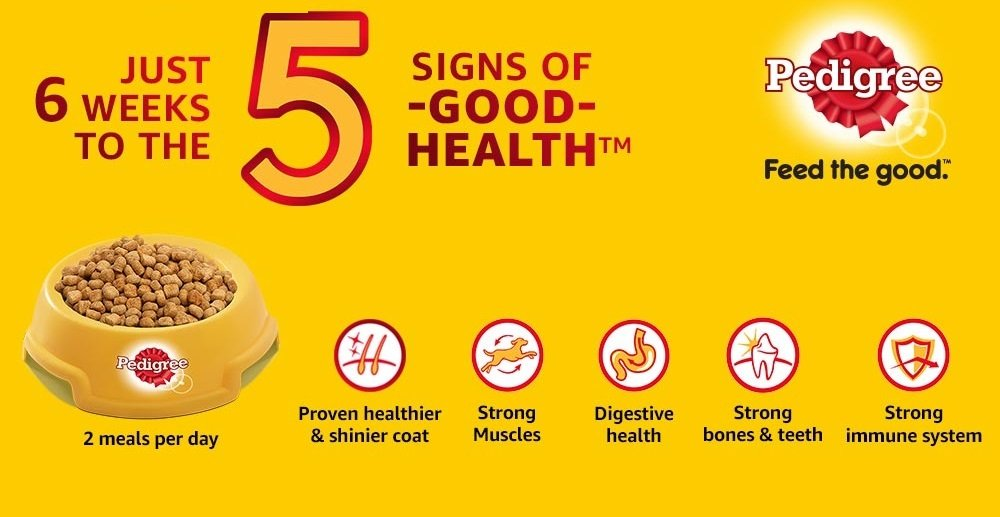 5 signs of good health