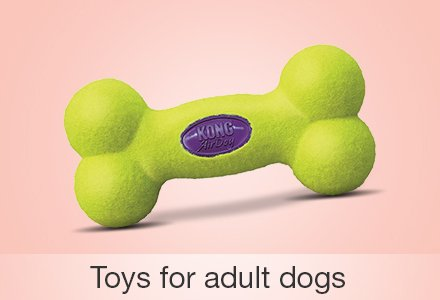 Toys for adult dogs