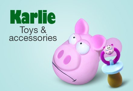 Toys & accessories