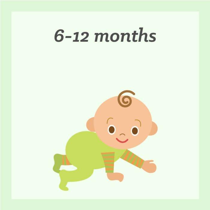 6 - 12 months
