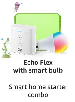 Echo Flex With Smart Bulb