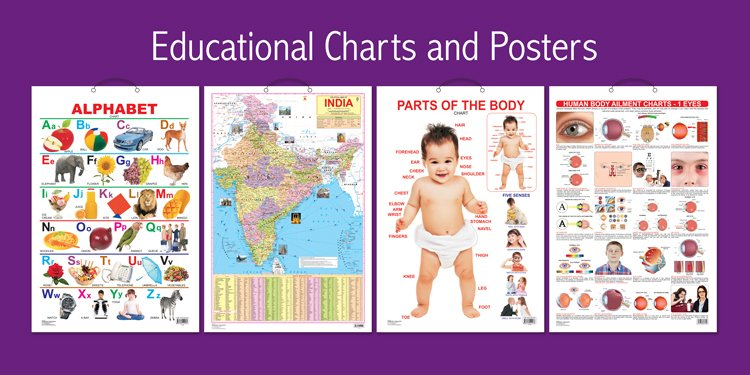 Educational Charts & Posters