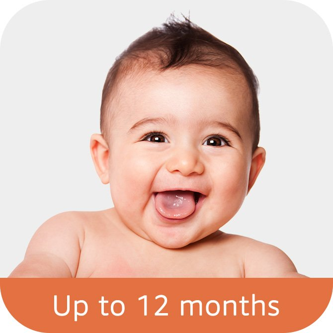 Up to 12 months