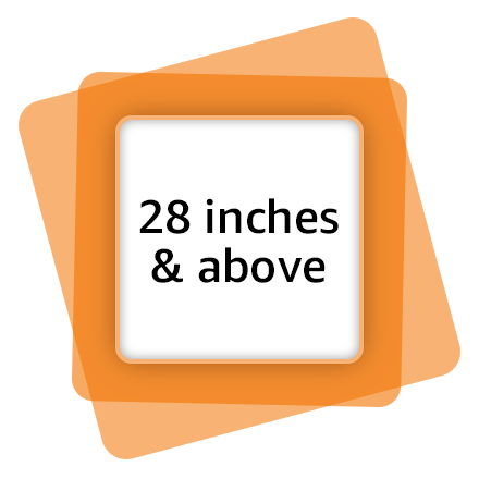 28 Inches and above