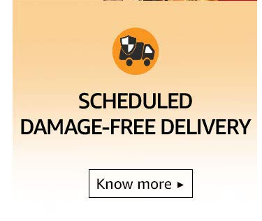 Scheduled Damage-Free Delivery