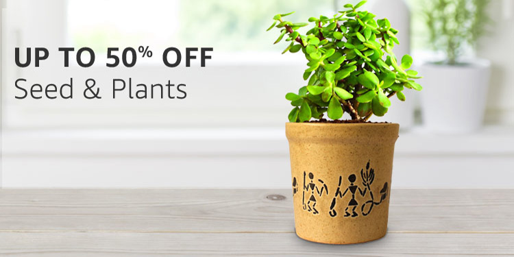 seeds & plants : Up to 50% off