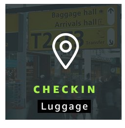 Checkin Luggage
