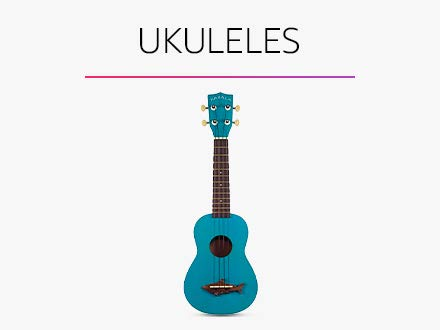 Musical Instruments Online Buy Musical Instruments In India Best