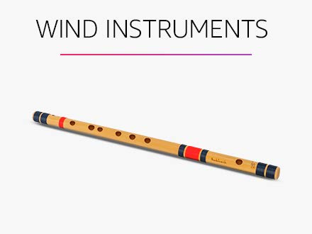 Musical Instruments Online Buy Musical Instruments In India At Best