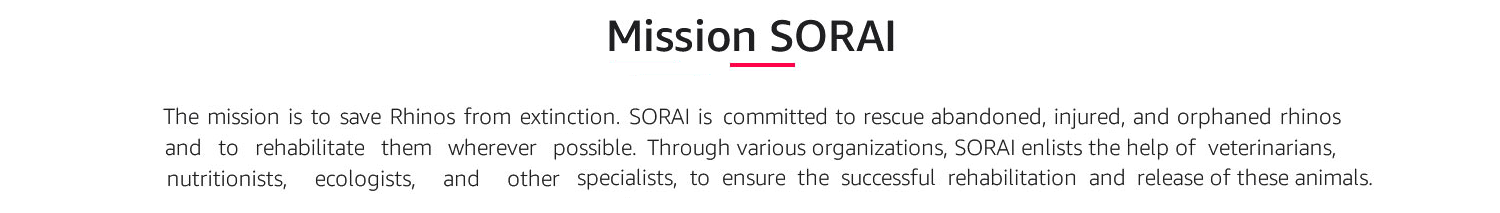 Mission SORAI