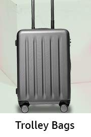 Luggage Store  Buy Trolley Bags 2ce4a79896df9