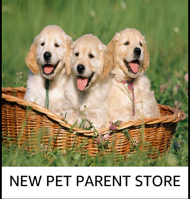 New pet parent