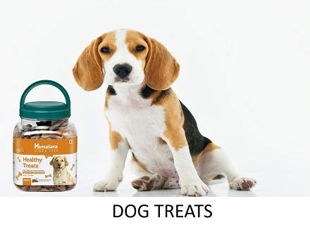 77fd2053 Pet Supplies: Buy Dog Supplies online at best prices in India ...