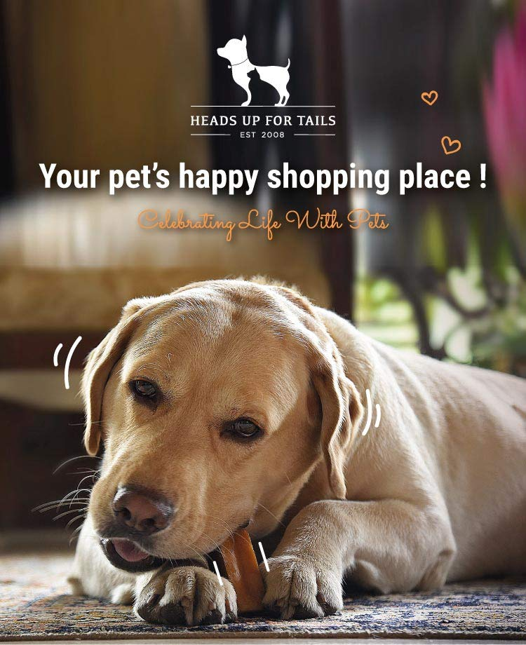 Pet Supplies: Buy Pet Supplies Online at Best Prices in