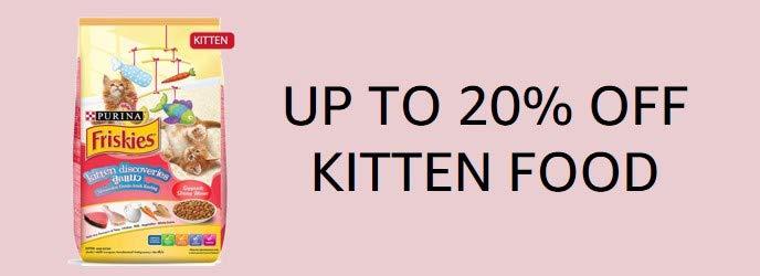 Kitten food