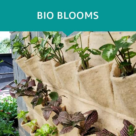 BIO BLOOMS AGRO INDIA PRIVATE LIMITED