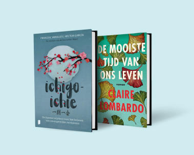 Nederlandse boeken bestsellers