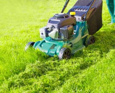 Grasmaaiers en elektrisch gereedschap