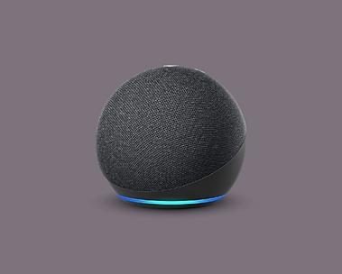 Echo Dot - Internationale versie