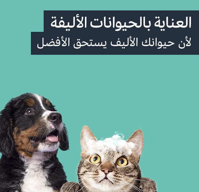العناية بالحيوانات الأليفة