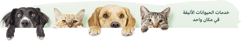 خدمات الحيوانات الأليفة في مكان واحد
