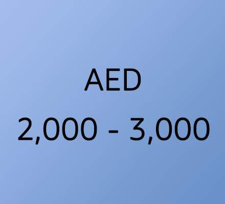2000 - 3000