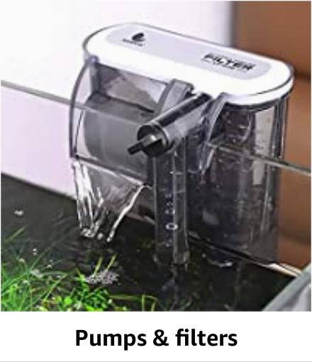 Pumps & Filters