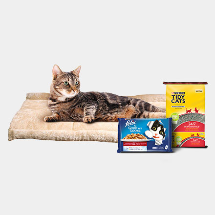 Amazon ae: Pet Supplies