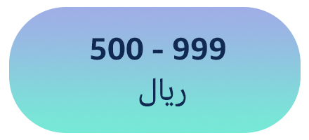 500 - 999