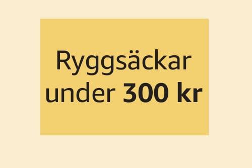 Ryggsäckar under 300 kr