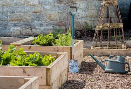 Narzędzia ogrodowe i sprzęt do nawadniania