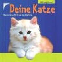 Deine Katze: Was sie braucht & was sie alles kann