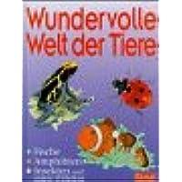 Wundervolle Welt der Tiere, Fische, Amphibien, Insekten und andere Wirbellose