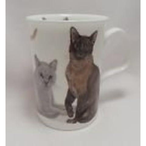 Gatos Galore–Taza, diseño de gatos–British Shorthair