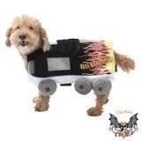 Road Hund Kostüm mit Flammen, Größe ()