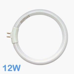 Leuchtmittel G10q 12W Tube Circular/Tageslicht (T4 Leuchtstoffröhre)