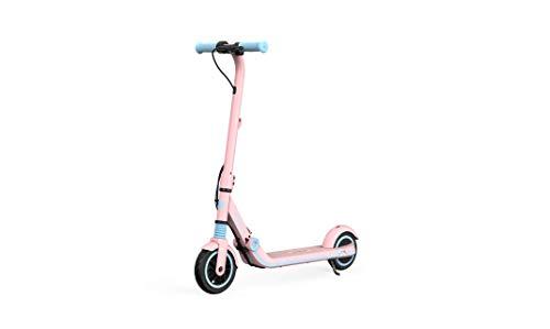 Imagen de Scooter Eléctrico Segway-ninebot por menos de 200 euros.
