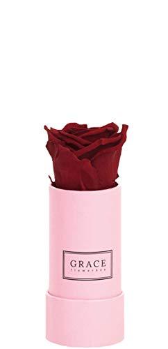 GRACE Flowerbox Royal Red | 1 echte rote Rose | 1-3 Jahre haltbare Infinity Rosen | Bekannt aus Die Höhle der Löwen Red Royal Rose