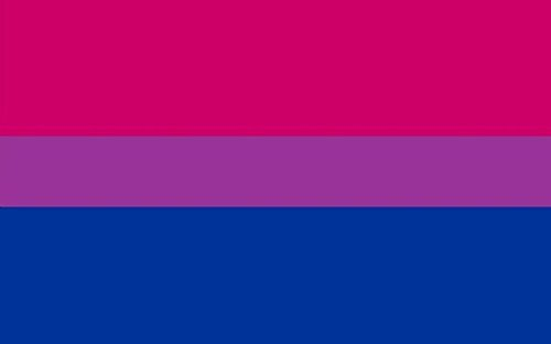 Perfectflags Bi-Pride Flag 5ft x 3ft Large - 100% Polyester - Metal Eyelets - Double Stitched -