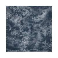 Walimex Stoffhintergrund (2,8x5,8m) graphit