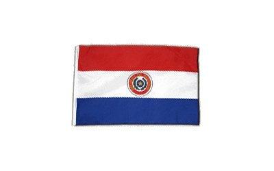 Fahne Flagge Paraguay 30 x45 cm
