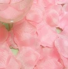 Seta di 100pcs GODHL rosa petali matrimonio partito tabella Home decorazioni fiori (rosa)