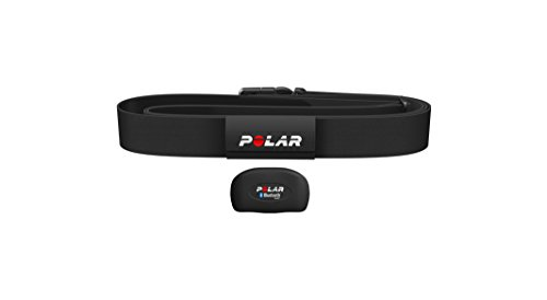 Polar Equine H7 Sensor mit Gurt - Inzone - Healthcheck - Horsetrainer -