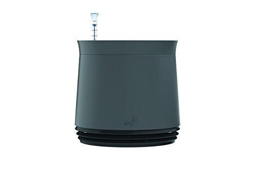 AIRY - Hochwirksame Luftreinigung mit Zimmerpflanzen in steingrau (Black Jack - schwarz)