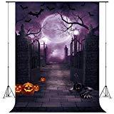 Five EWARE Fotohintergrund für Halloween, Party, Dekoration, Studio, Foto-Requisiten, 12,7 x 2,1 m, Halloween bat