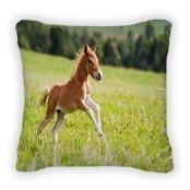new-mini-horse-falabella-throw-pillow-poplin-16x16
