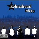 Songtexte von Zebrahead - MFZB