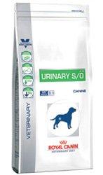 Royal Canin Urinary S/O Cane secco