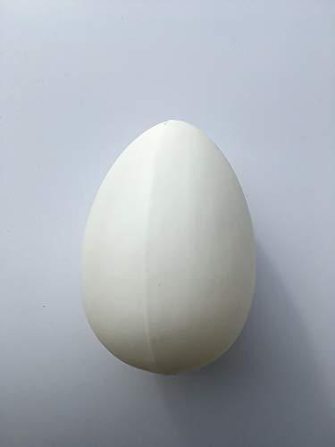 Erro straußenei strauss 16572 - guida per uova di pasqua, in plastica, misura xl